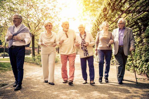 高齢者の交通事故を減らす方策を考えよう
