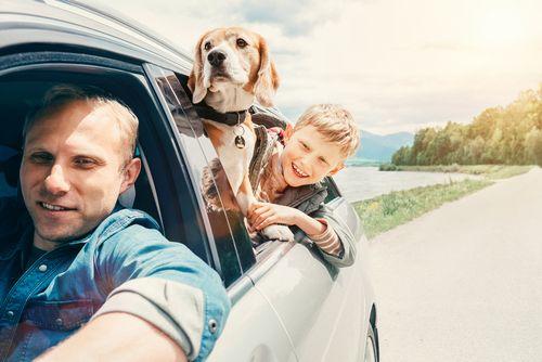 運転者年齢条件を設定しよう